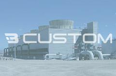 Brauer Custom